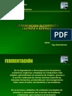 fermentacionesindustriales-090601171203-phpapp01