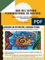 LENGUAS DEL ESTADO PLURINACIONAL DE BOLIVIA