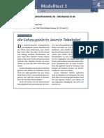 Prüfungstraining 2B Übungssatz 03 Online