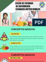 NECESIDADES NUTRICIONALES-FUNDAMENTOS 2021