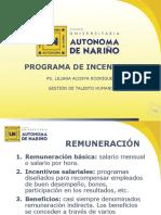 PROGRAMA_DE_INCENTIVOS