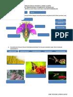 9. reproduksi tumbuhan