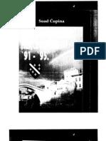 Suad Cupina - Izdaje i Obrana Hercegovine 1991 - 1995