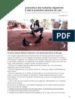 lavoixdupaysan.net-Cameroun  La prévention des maladies digestives des poules se fait dès la première semaine de vie