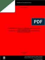 TCC formato A5 final - TCC Daniele Rauber