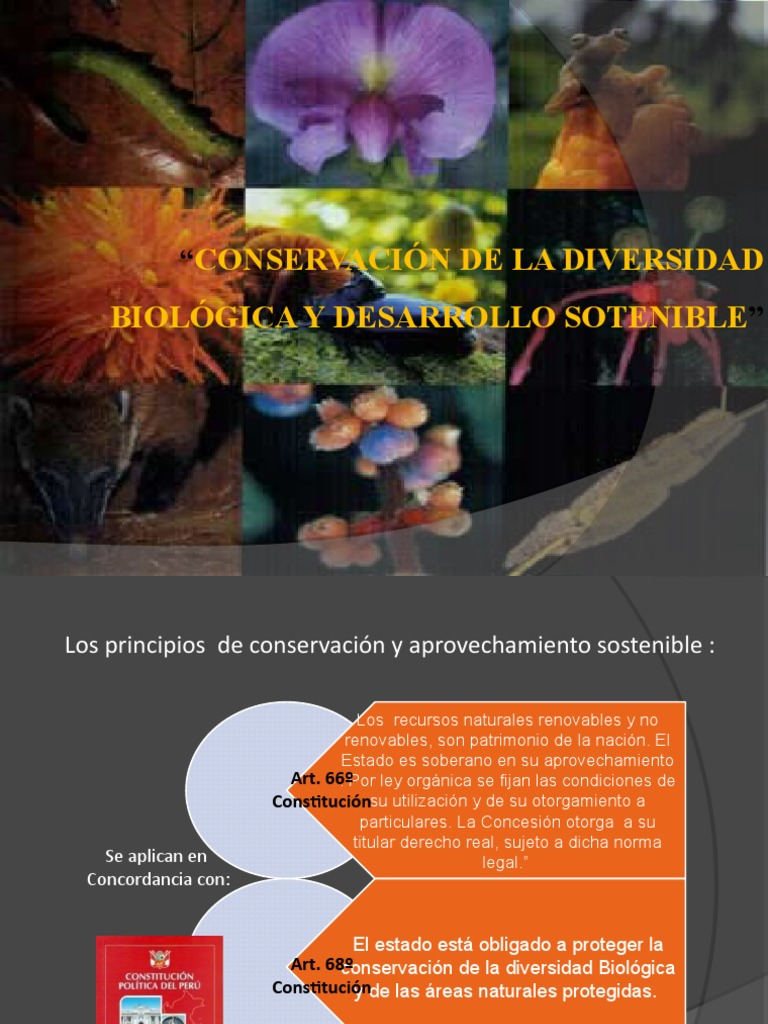 590da8e751fb Conservación y Aprovechamiento sostenible de la Diversidad Biológica en el  Perú - MINAM