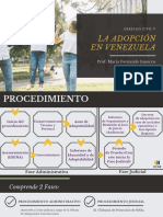La Adopcion (1)