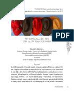 4. Mugueta, M. A. Antropologías del sur. Una salida revolucionaria.