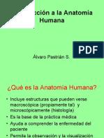 Introducción a la Anatomía Humana 2011