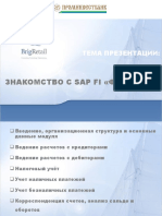PIB FI_v01
