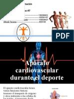 Aparato Cardiovascular Durante El Deporte