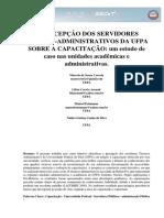 A percepção dos TAES da UFPA sobre capacitação