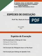 Aula 3 - Espécies de Execução