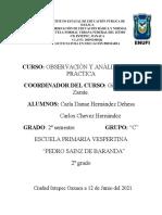 Formato de Protocolo de Observacion (1)