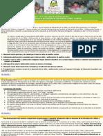 Boletin Informativo Florecer - Diciembre 2010
