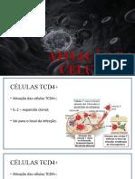 Ativação Das Células t