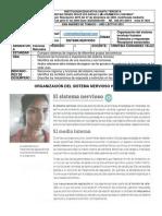 Guía Pedagógica No. 2 – Ciencias Naturales – 8° Jm - periodo I – 2021