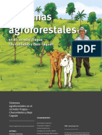 Fichas Modelos Agroforestales_alta