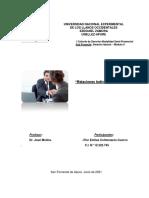 Flor Colmenares Mi Ensayo Derecho Laboral Modulo II