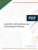 GESTÃO DE PROCESSOS DA SEGURANÇA PRIVADA
