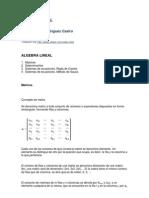 ALGEBRA LINEAL COMPENDIO