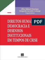 dtos humanos democracia e desenhos institucionais LILIAN E MARGARIDA