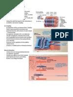 Muscle_Tissue_Handouts_Parts_3-5