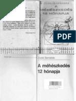 Zsidei B.-A méhészkedés 12 hónapja (pdf)