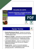 Impactos ambientais e emissões de gases efeito estufa (GEE) gado de corte