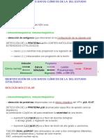 CIGIN_UD_2_BIOLOGÍA_MOLECULAR_1