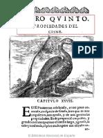 Cisne VALDECEBRO - Govierno general moral y politico hallado en las aves - BNE - mejor imagen