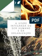 a-visao-integrada