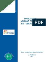 Manual de NormasTB2017