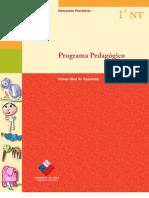 PROGRAMA PEDAGOGICO NT1