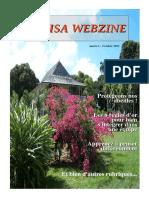 Webzine1