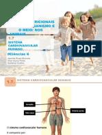 Aecn6 Ppt Cardiovascular