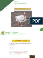 Initiation à l'Aviculture Introduction Et Test de Connaissance
