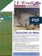 Elevage_de_l-aulacode