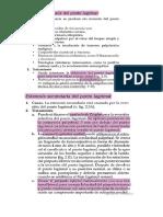 SEMINARIO ALTERACIÓN DE VÍAS LAGRIMALES DACRIOCISTITIS  DACRIOADENITIS