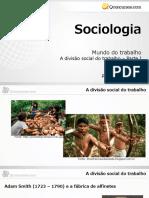 Divisão Social do Trabalho - Parte 1