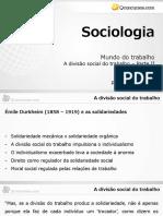 Divisão Social do Trabalho - Parte 2