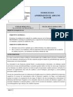 INFORME TECNICO ANSIEDAD EN EL ADULTO MAYOR