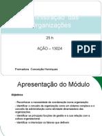 Administracao Das Organizacoes 25h
