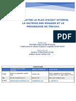 plan d'audit matrice des risques programme travail