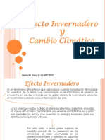 Efecto Ivernadero, Belinda Soto