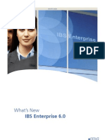 IBS_Enterprise_6.0