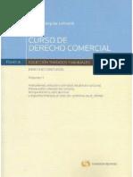 Curso Derecho Comercial Eduardo Jequier Tomo 1
