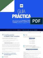 Guia practica declaración PN ECUADOR 2020 (1)