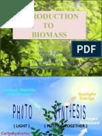 biomass presentation