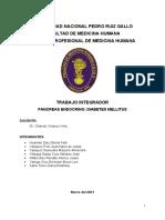 Trabajo Integrador Pancreas Endocrino Diabetes Mellitus